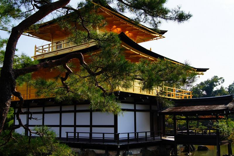 Golden pavilion 1