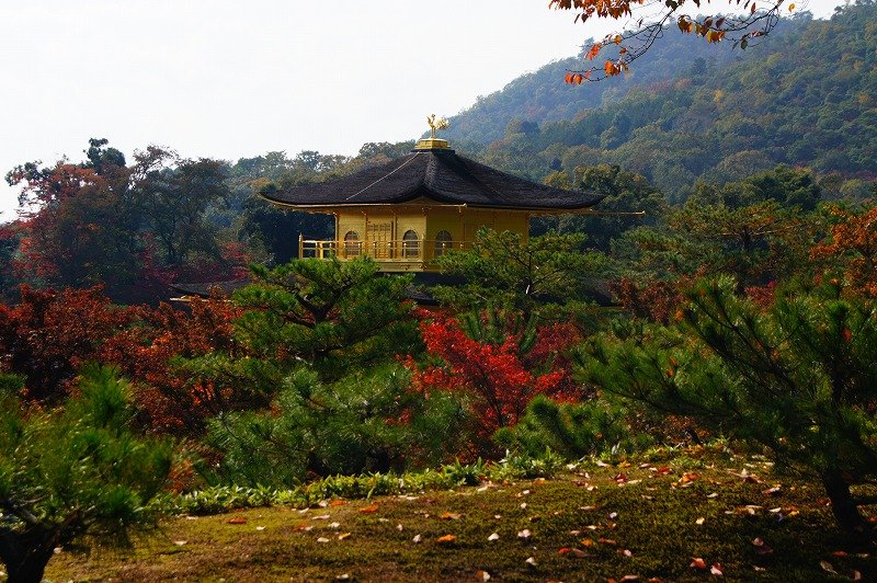 Golden pavilion 3