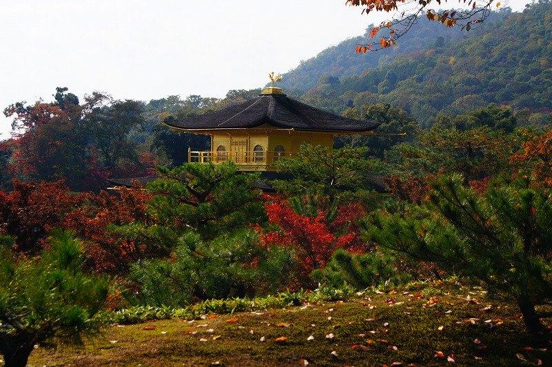Golden pavilion 3
