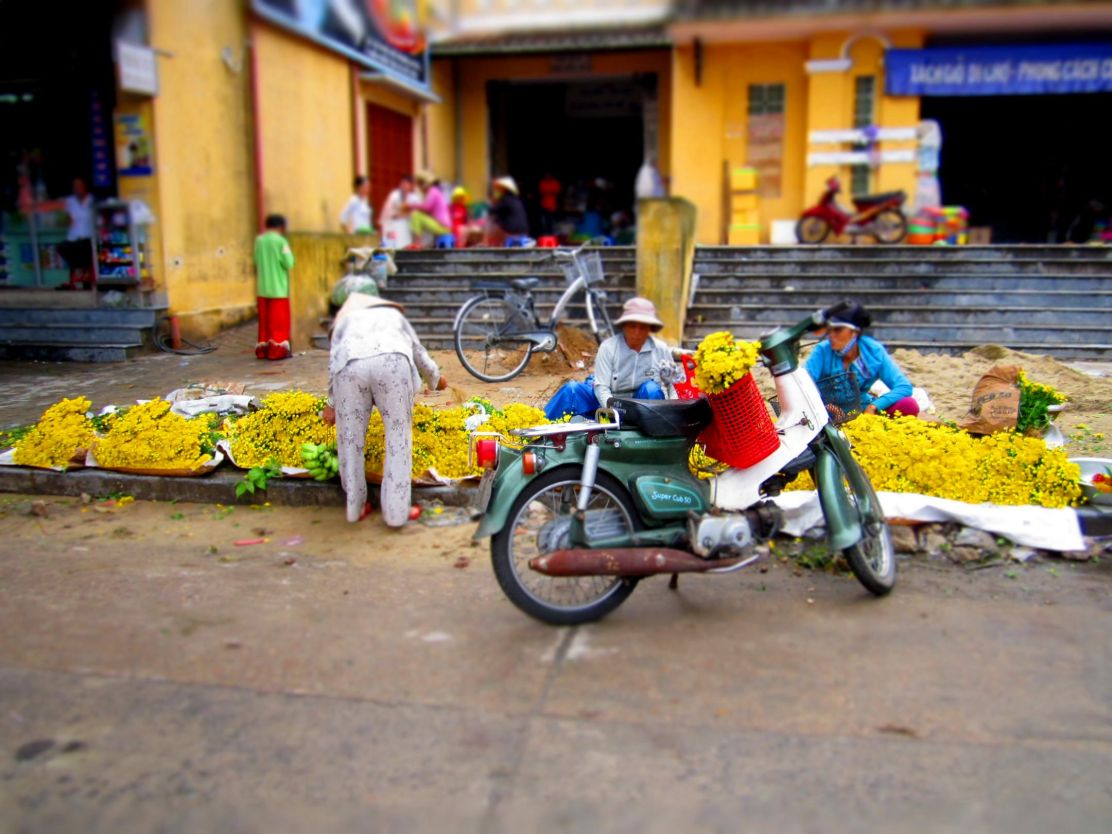 Flowers for offerings, vietnam