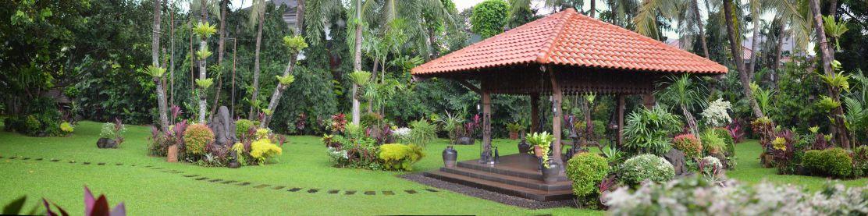 Panorama kebun